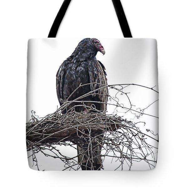 Turkey Vulture Tote Bag by Douglas Barnard