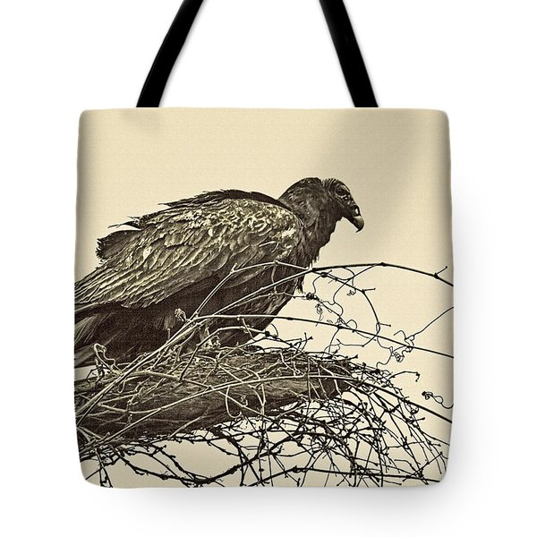 Turkey Vulture V2 Tote Bag by Douglas Barnard
