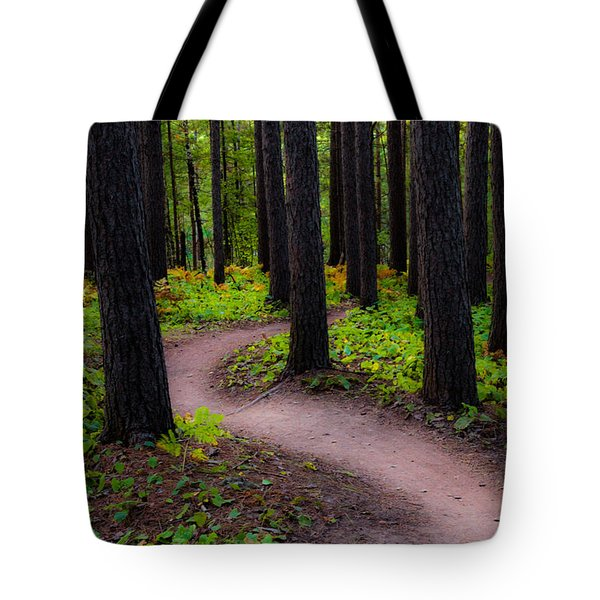 Turning Tote Bag by Mary Amerman