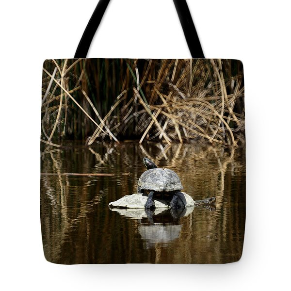 Turtle on Turtle Tote Bag by Ernie Echols