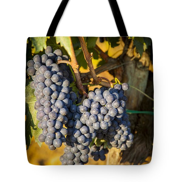 Tuscan Vineyard Tote Bag by Brian Jannsen