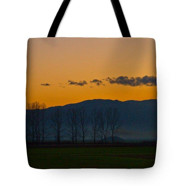 Twilight Mist Tote Bag by Eti Reid