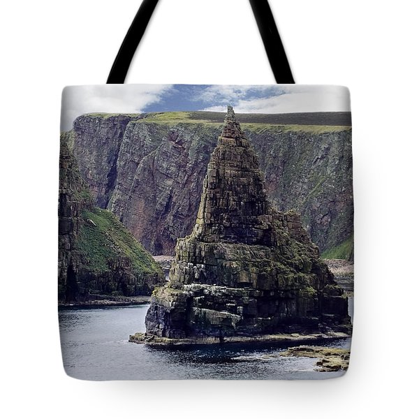 Twin Peaks Tote Bag by Roger Wedegis