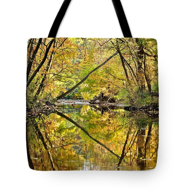 Twins Tote Bag by Frozen in Time Fine Art Photography
