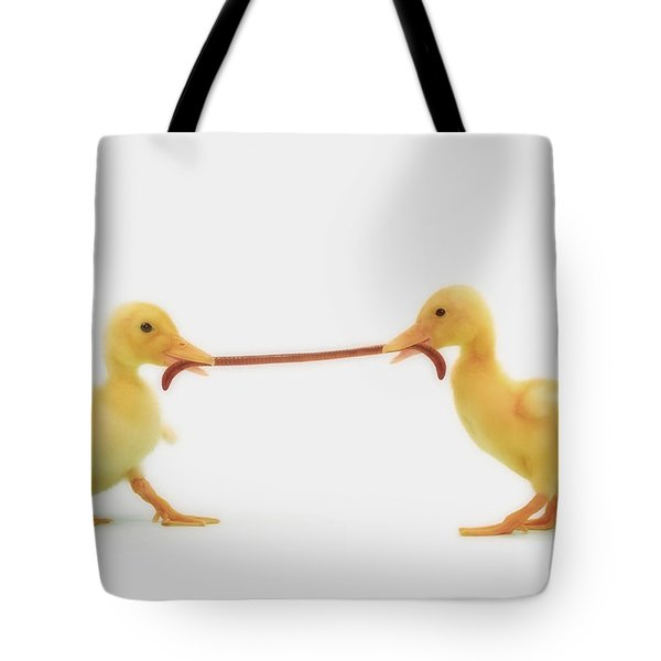Two Baby Ducklings Fighting Tote Bag by Thomas Kitchin & Victoria Hurst