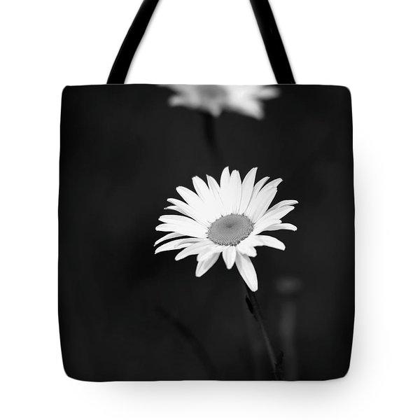 Two Daisies Tote Bag by Sabrina L Ryan