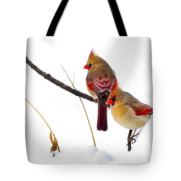 Two Females Posing As Cardinals Tote Bag by Randall Branham