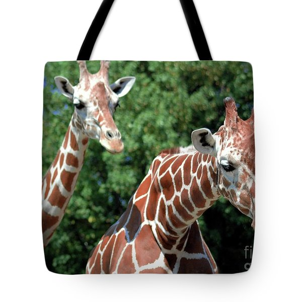 Two Giraffes Tote Bag by Kathleen Struckle