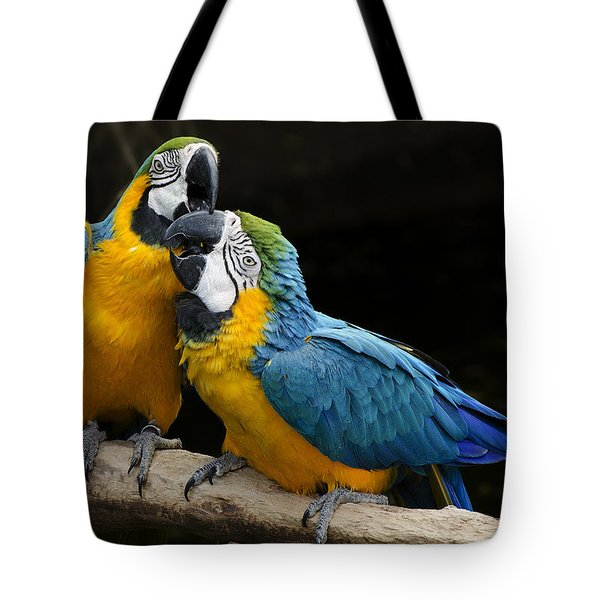 Two Parrots Squawking Tote Bag by Dave Dilli