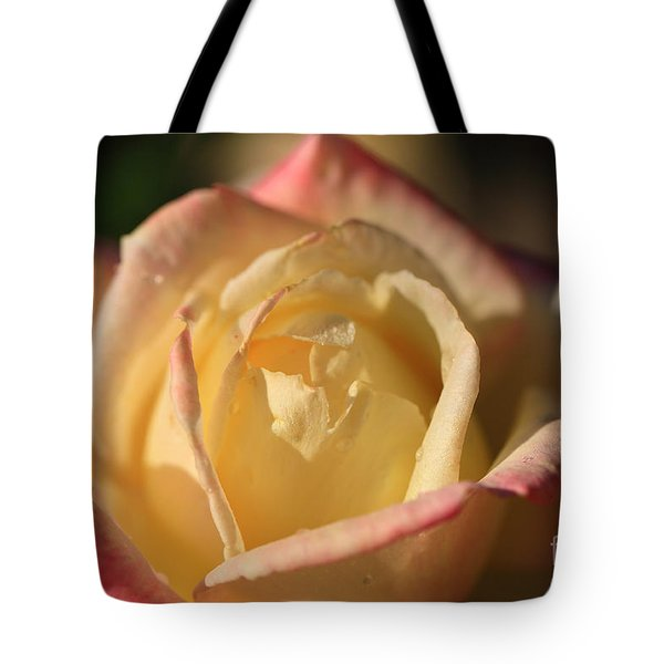 Two Tone Tote Bag by Cheryl Young