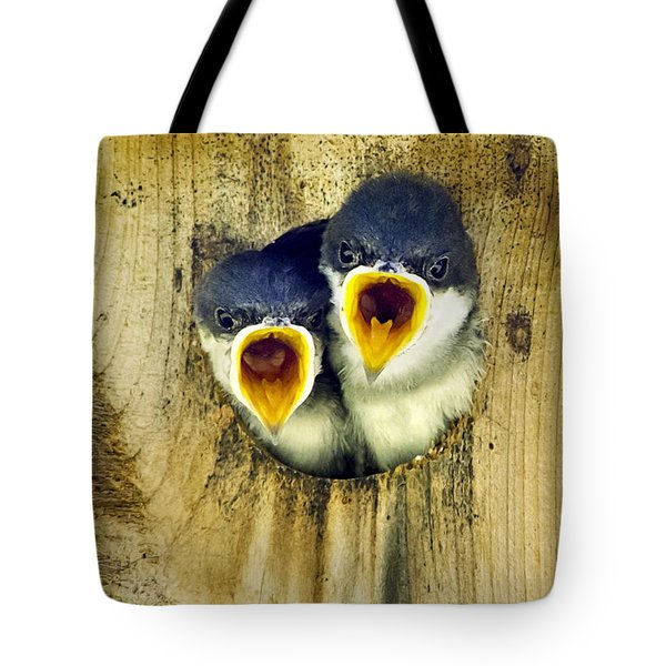 Two Tree Swallow Chicks Tote Bag by Christina Rollo