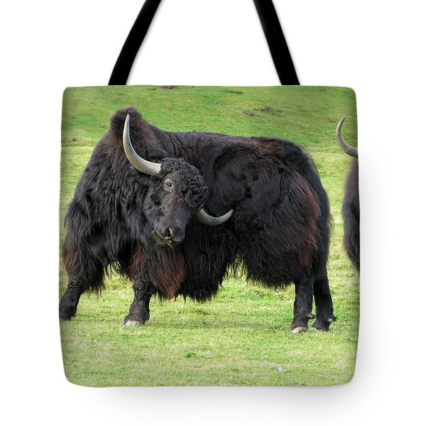 Yaketty Yak Tote Bag by Liz Leyden
