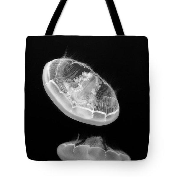 Ufos - Moon Jelly Aurelia Labiata In Black And White. Tote Bag by Jamie Pham