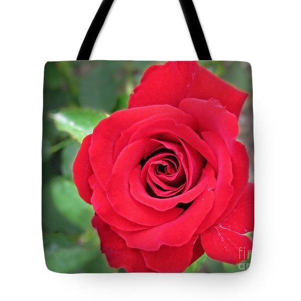 Unconscious Beauty Tote Bag by Ella Kaye Dickey