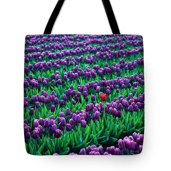 Unique Tote Bag by Benjamin Yeager