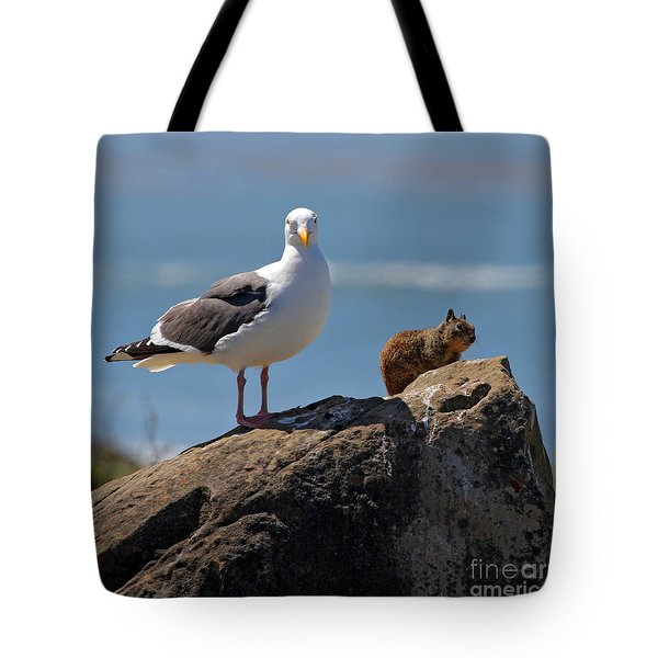 Unlikely Friends by Diana Sainz Tote Bag by Diana Sainz