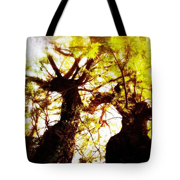 Untitled-twin Trees Tote Bag by Juliann Sweet