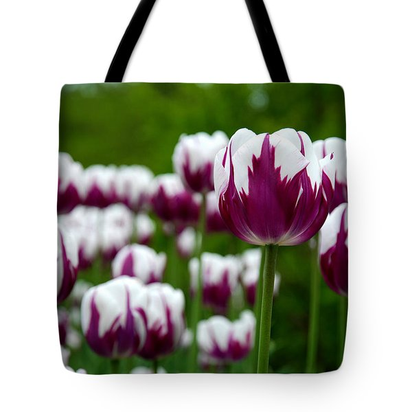 Unusual Tulips Tote Bag by Jennifer Lyon
