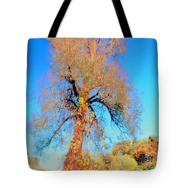 Up Rooted Tree Tote Bag by Kathleen Struckle