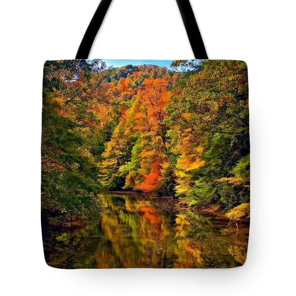 Up The Lazy River Painted Tote Bag by Steve Harrington