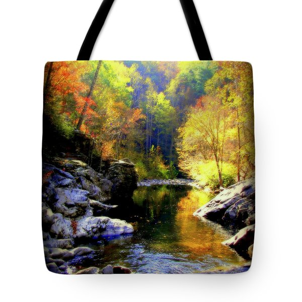 Upstream Tote Bag by Karen Wiles