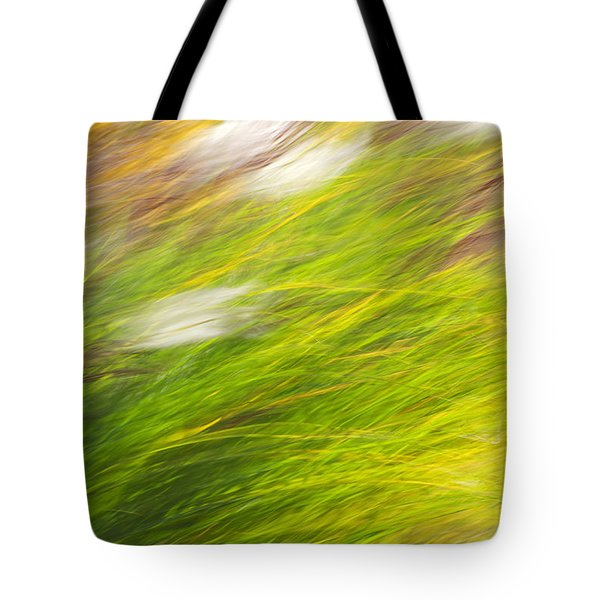 Urban Nature Fall Grass Abstract Tote Bag by Christina Rollo
