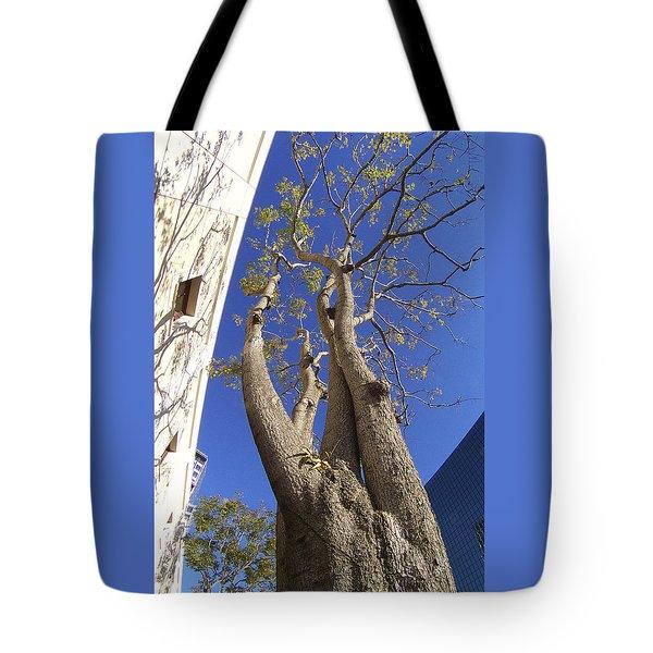 Urban Trees No 1 Tote Bag by Ben and Raisa Gertsberg