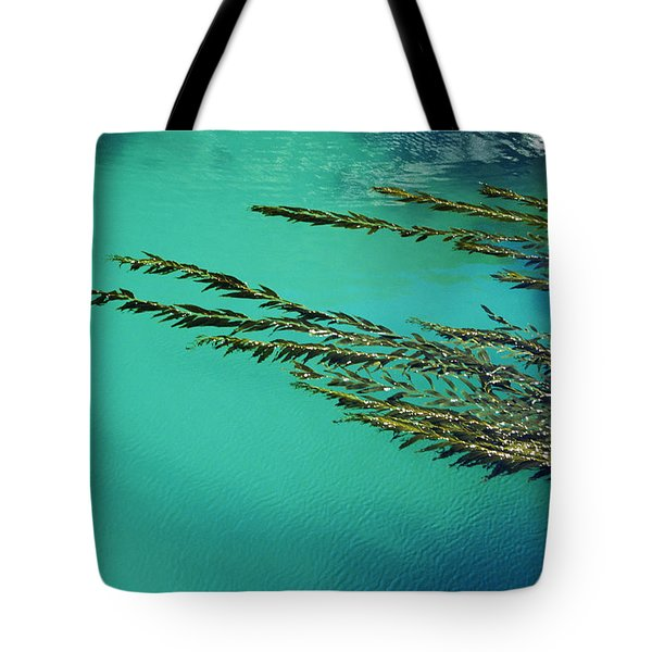 Usa, California, Seaweed Floating Tote Bag by Larry Dale Gordon