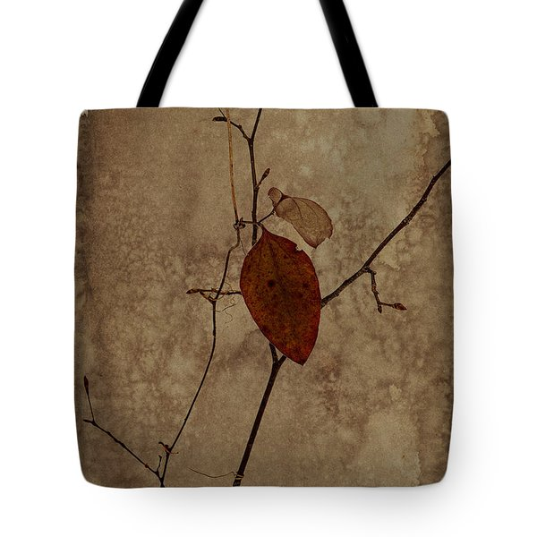 Valentine Wishes Tote Bag by Ron Jones