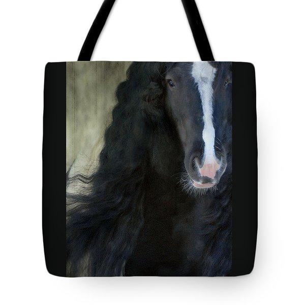 Valentino Dreams Tote Bag by Fran J Scott