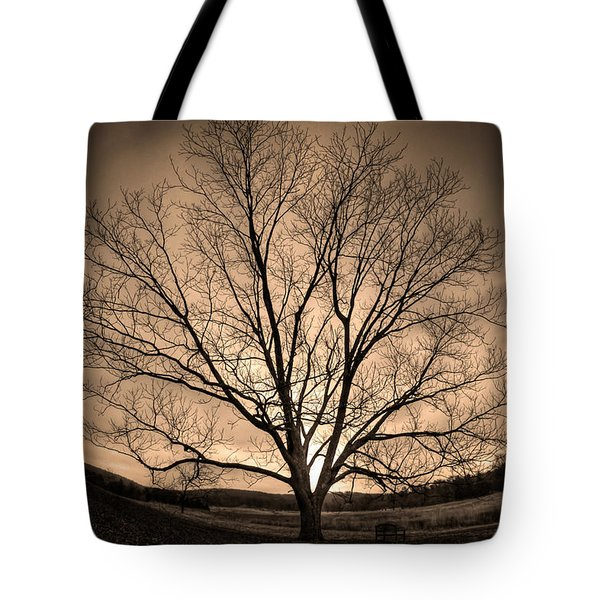 Valley Of Promise Tote Bag by Mark Six