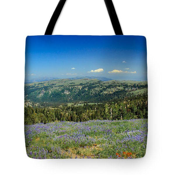 Vast View And Lupine Tote Bag by Robert Bales