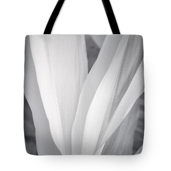 Veil Tote Bag by Adam Romanowicz
