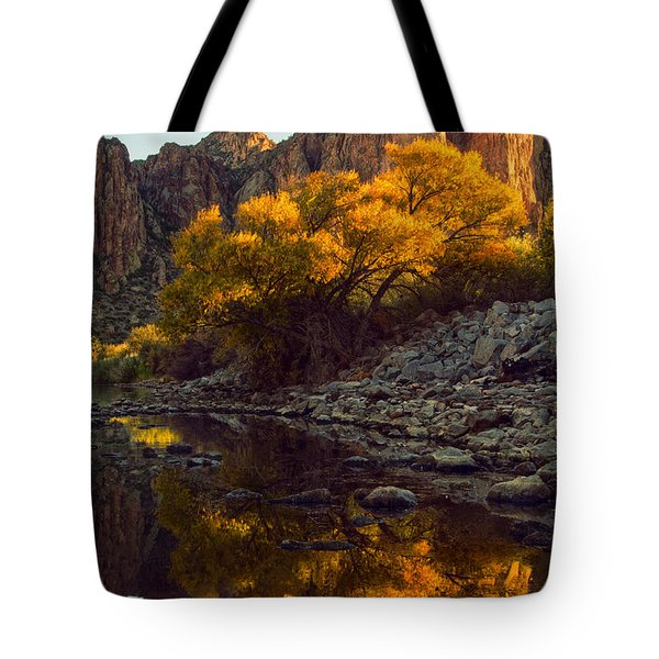 Vertical fall color reflections Tote Bag by Dave Dilli