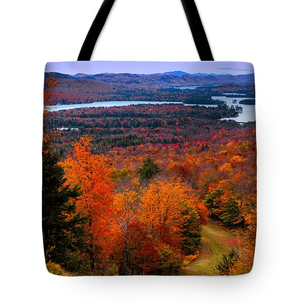 View From McCauley Mountain II Tote Bag by David Patterson