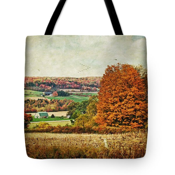 View From The Hill... Tote Bag by Lianne Schneider