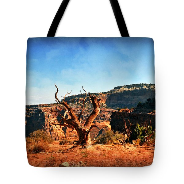 View Of The Canyon Tote Bag by Marty Koch