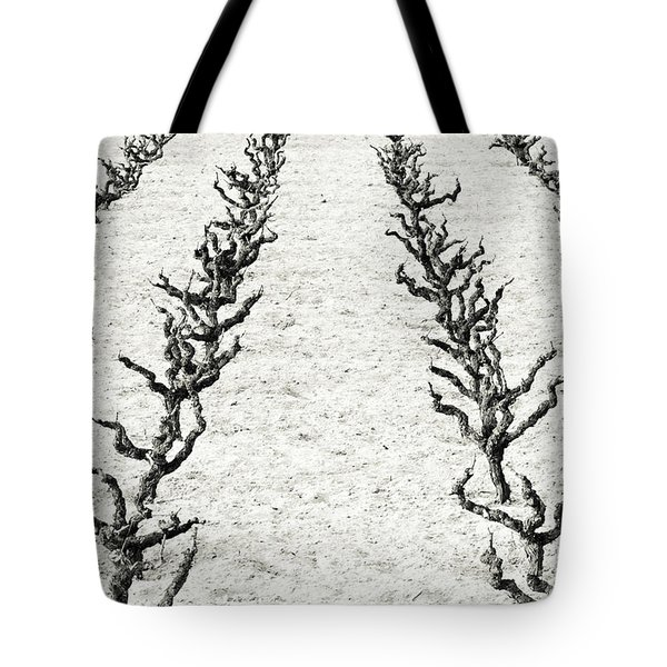 Vines Tote Bag by Frank Tschakert