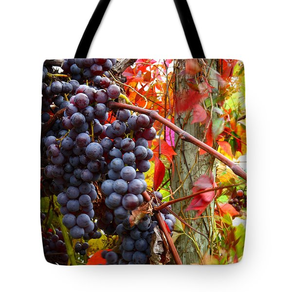 Vines Of October Tote Bag by Roger Bailey
