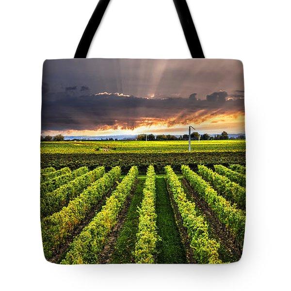 Vineyard at sunset Tote Bag by Elena Elisseeva
