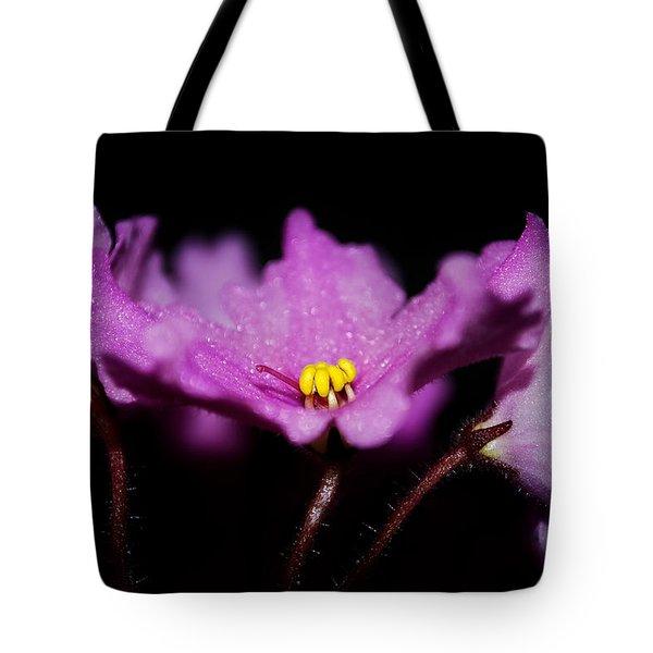 Violet Prayers Tote Bag by Lisa Knechtel