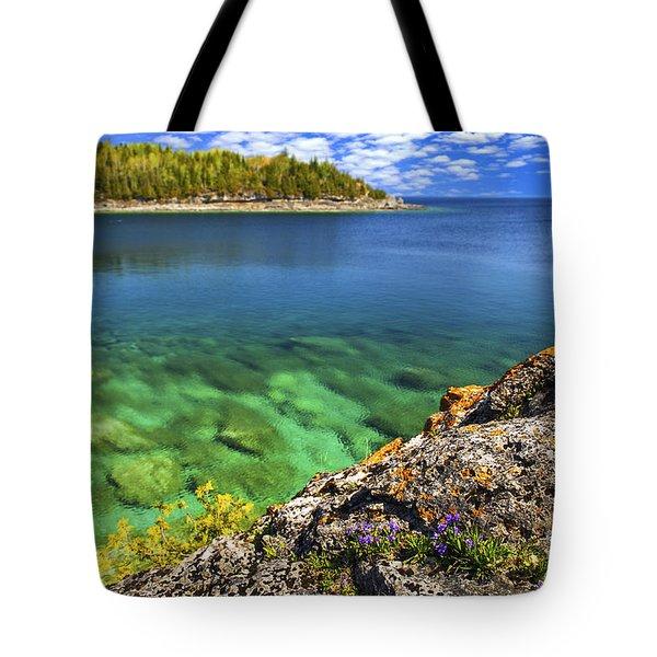 Violets At Georgian Bay Tote Bag by Elena Elisseeva