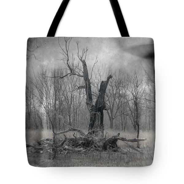 Visitor In The Woods Tote Bag by Jim Shackett