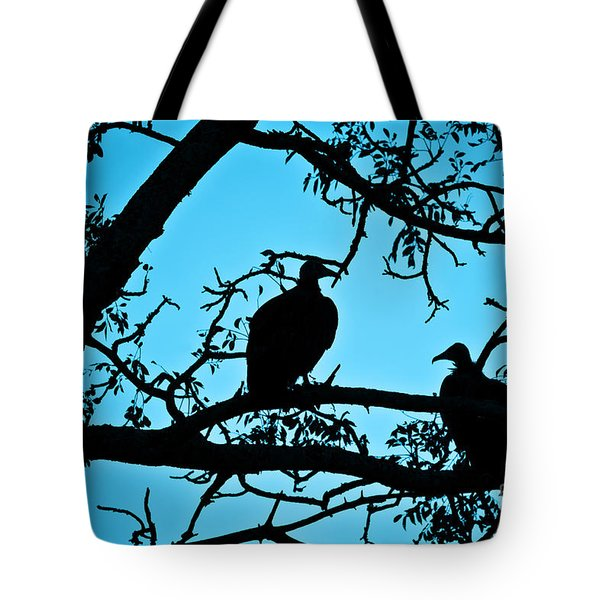 Vultures Tote Bag by Delphimages Photo Creations