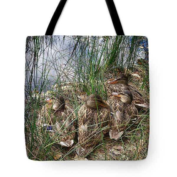 Waddle Of Ducks Tote Bag by Trever Miller