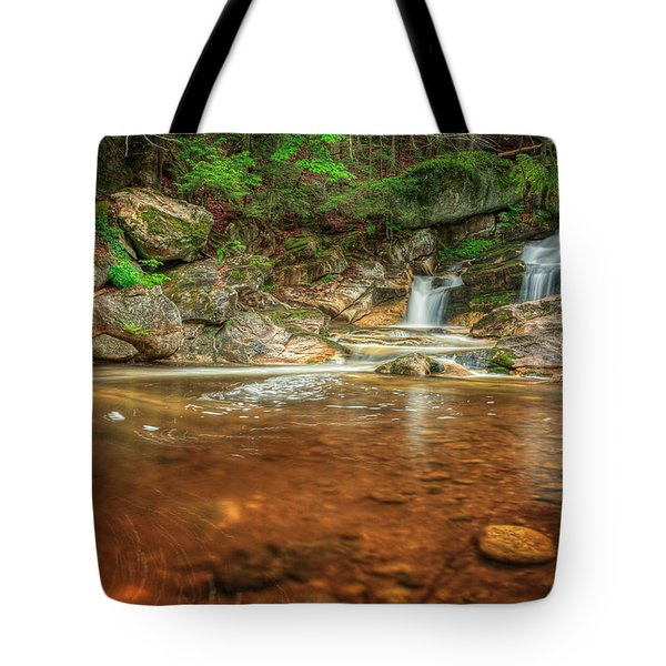 Wading Pool Tote Bag by Bill  Wakeley