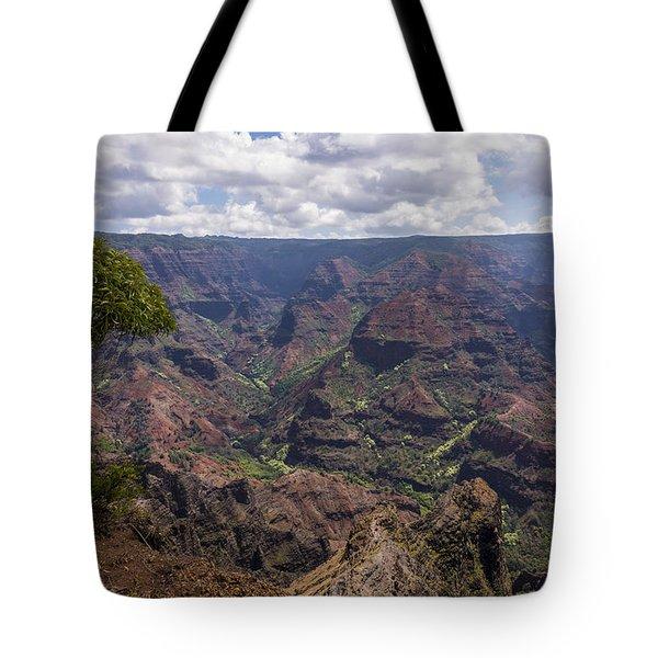 Waimea Canyon 5 - Kauai Hawaii Tote Bag by Brian Harig