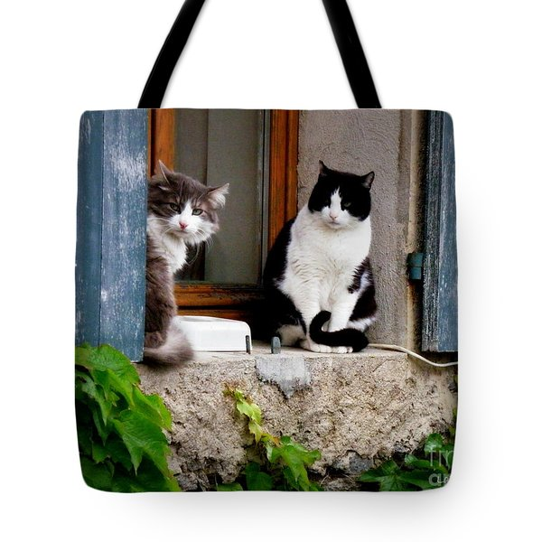 Waiting For Dinner Tote Bag by Lainie Wrightson