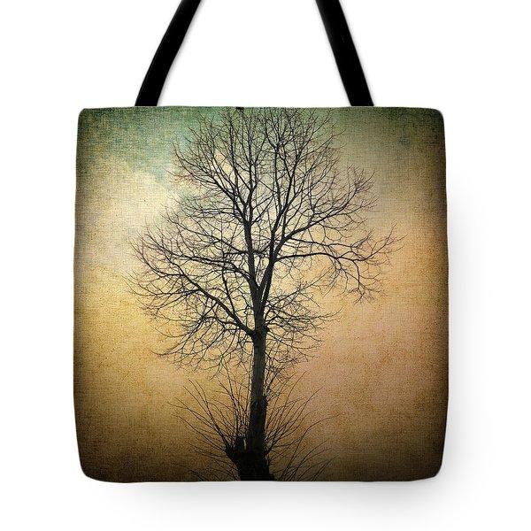 Waltz of a tree Tote Bag by Taylan Soyturk