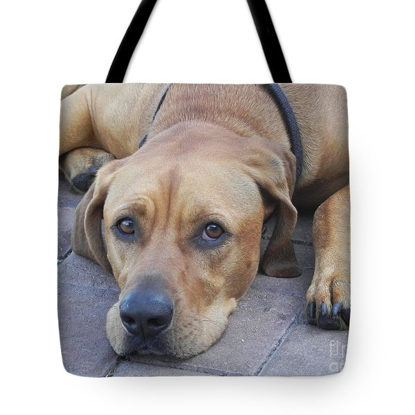 Want To Play  Tote Bag by Chrisann Ellis